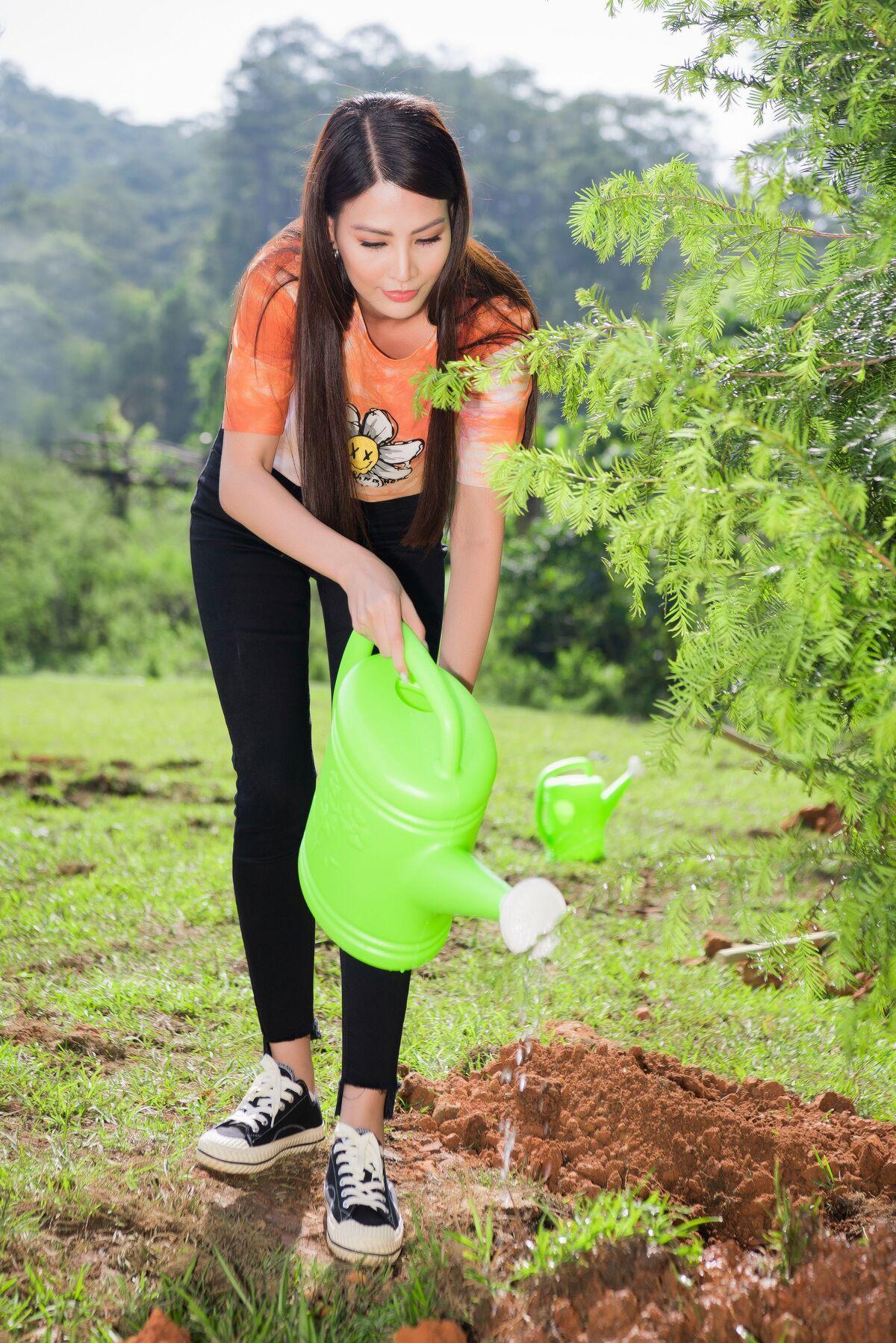 Trúc diễm diễm hương trồng cây ở lâm đồng - 6