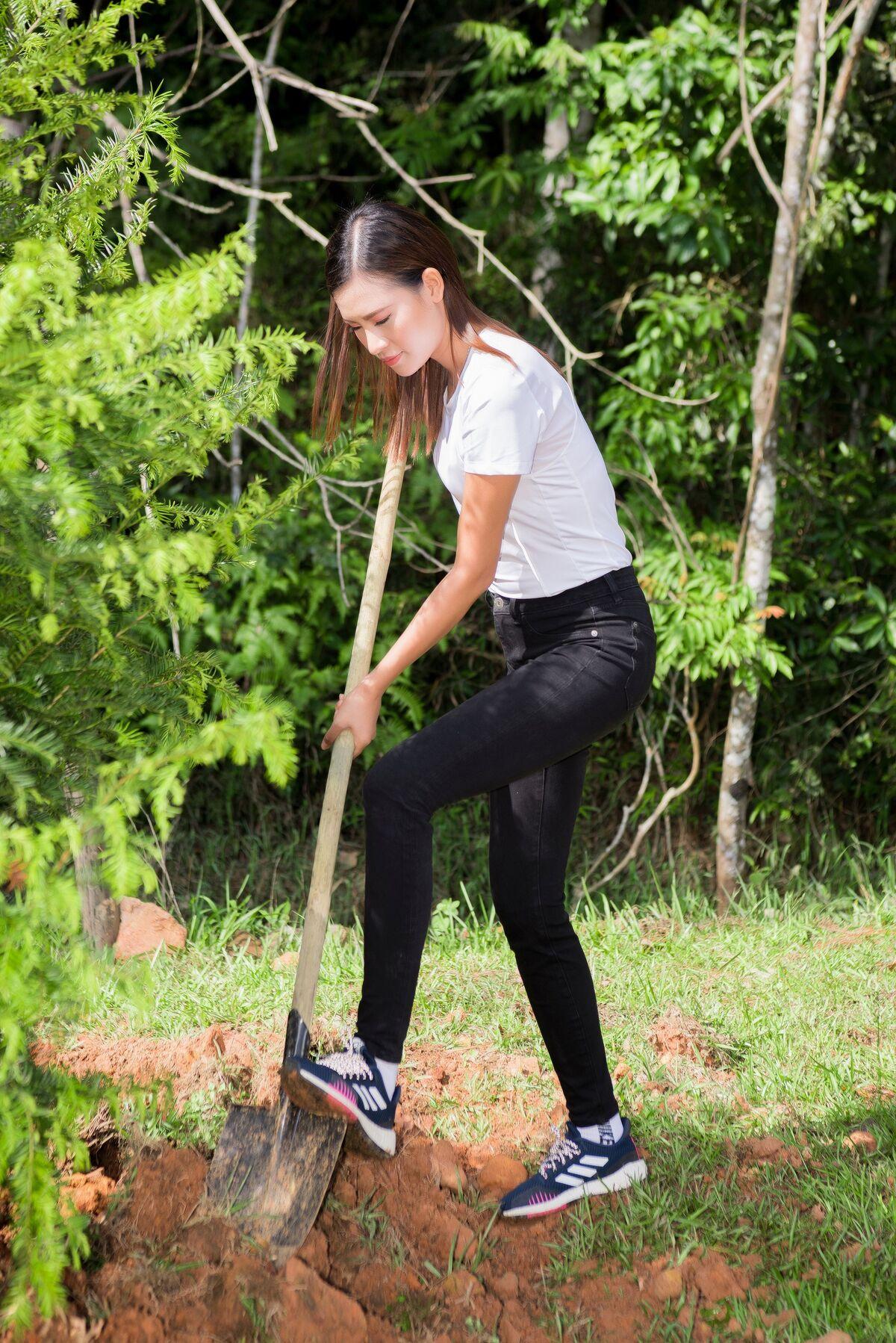 Trúc diễm diễm hương trồng cây ở lâm đồng - 8